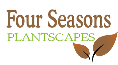 Four Seasons Plantscapes